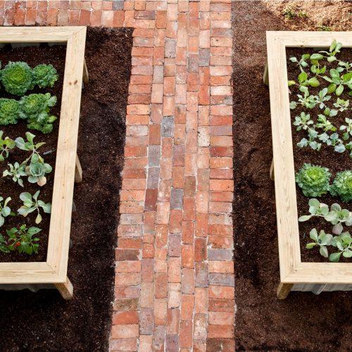 VISION House - PRINT-17 planters